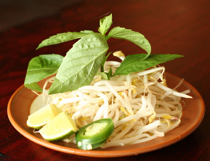 Bean sprouts and garnish